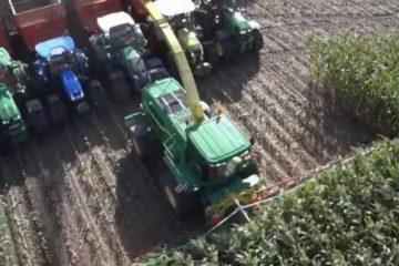 Couper 20 rangées de maïs en même temps c'est possible