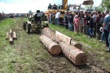 Épreuve de tirage de tronc d'arbres